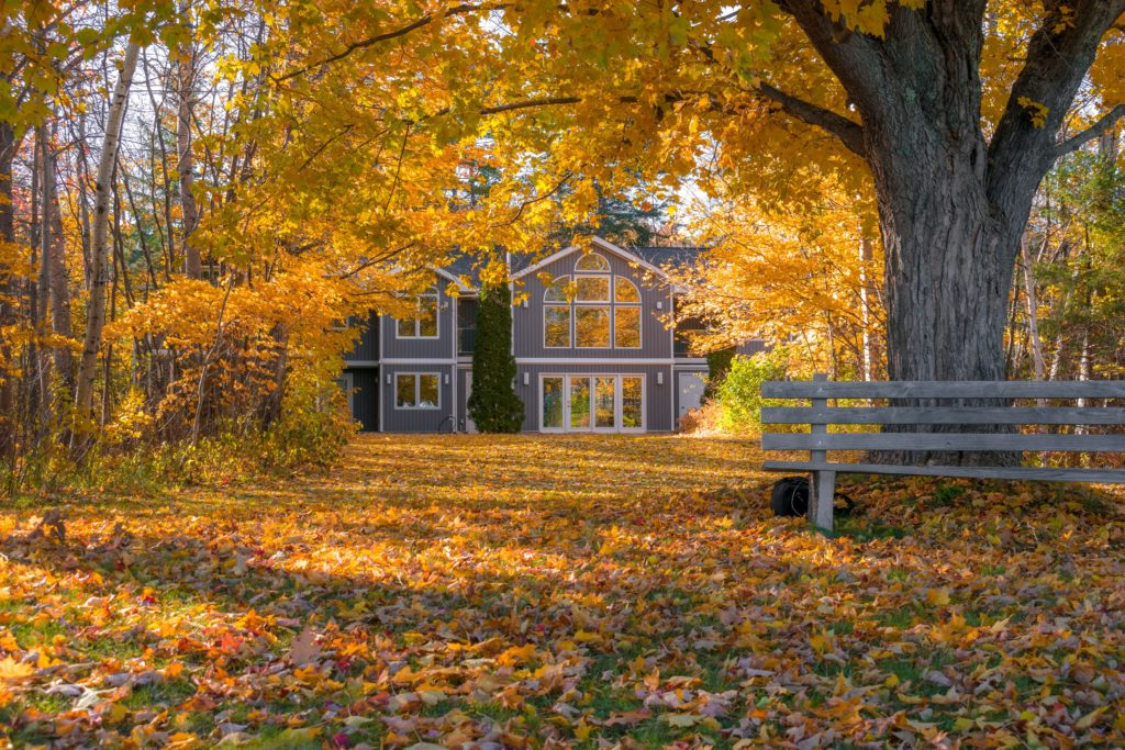 beautiful fall leaves with surrounding country home